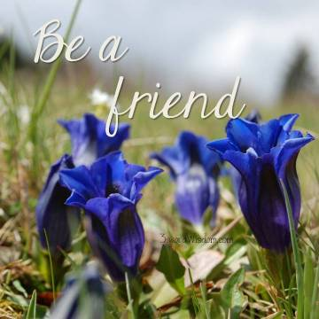 Be a friend