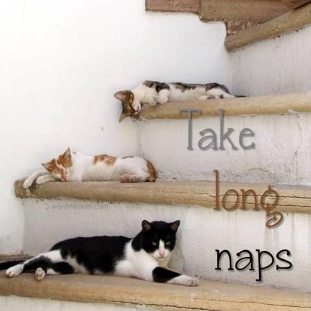 take long naps