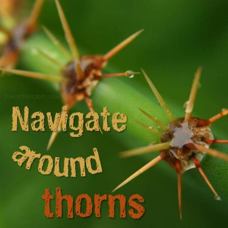 navigate around thorns