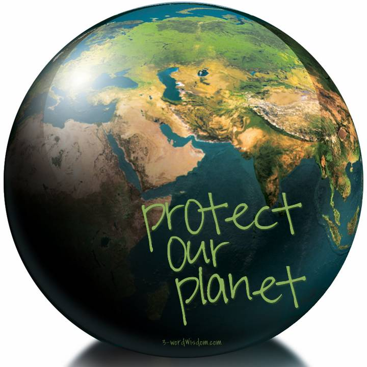 how can we save our earth in points