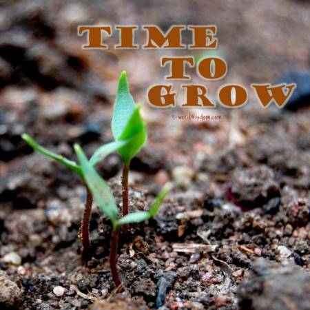 time to grow