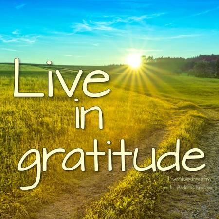 gratitude 8