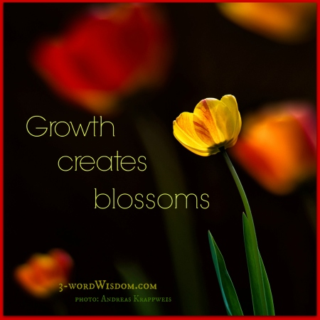Growth creates blossoms