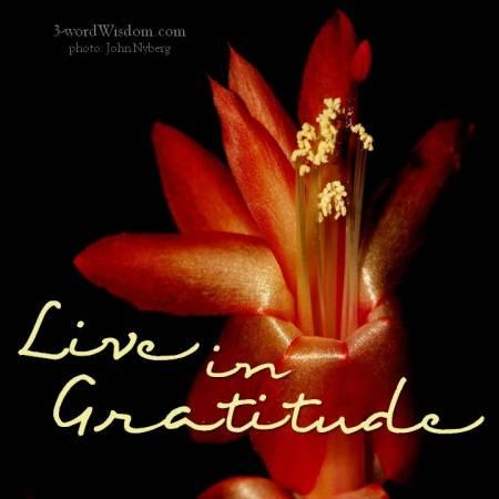 gratitude 12