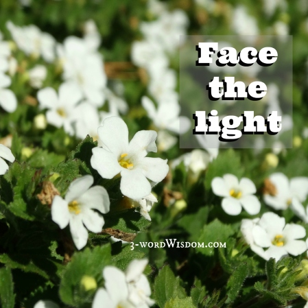 face the light