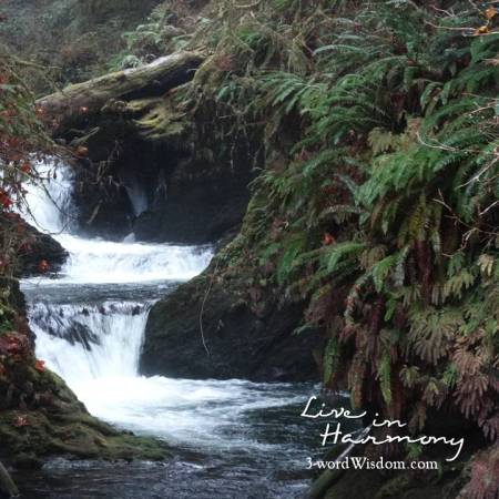 harmony creek