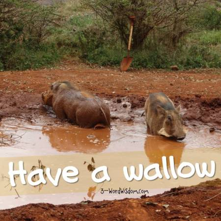 have a wallow