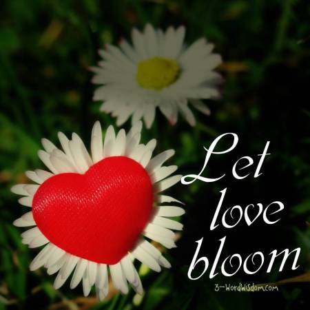 let love bloom