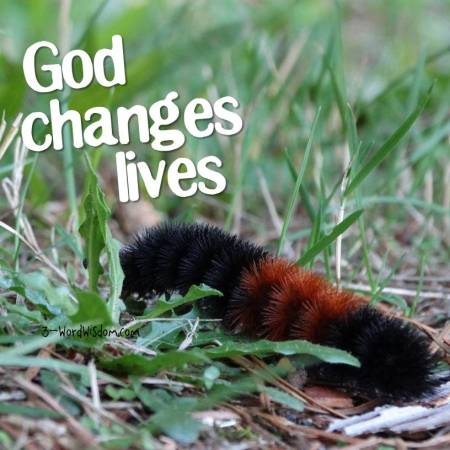 God changes lives