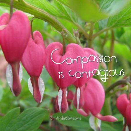 compassion is contagious
