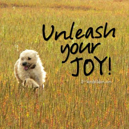 unleash-your-joy