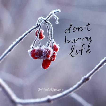 dont-hurry